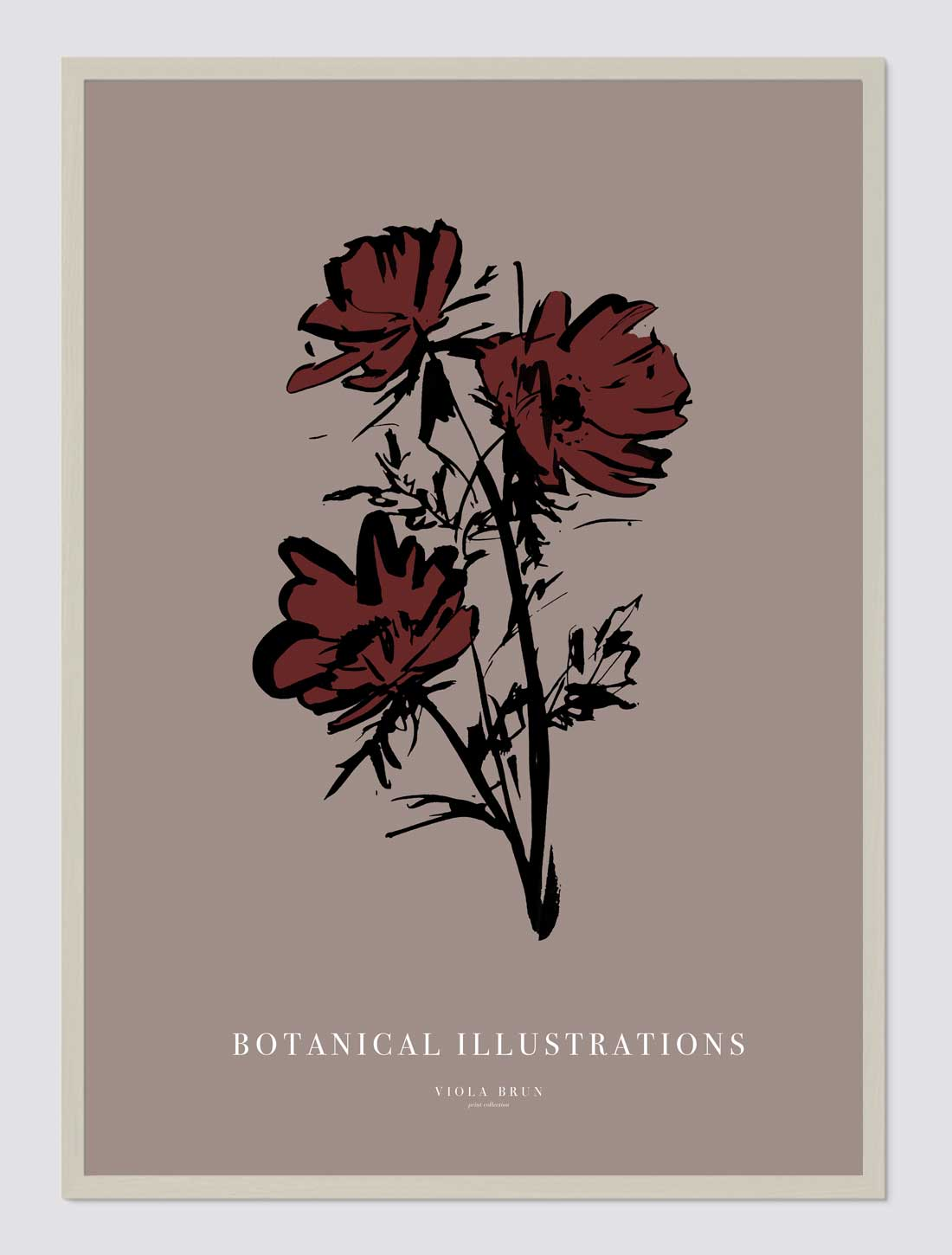 Botanical Illustrations (Anemone)