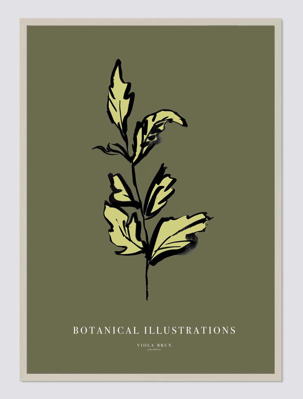 Botanical Illustrations (Leaf)