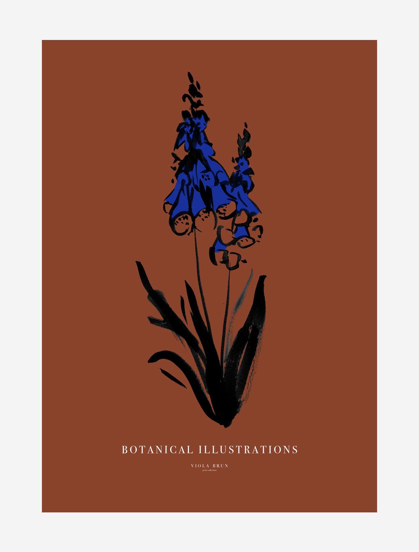 Botanical Illustrations (Foxglove)