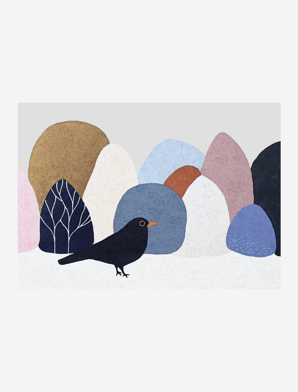 Blackbird 05