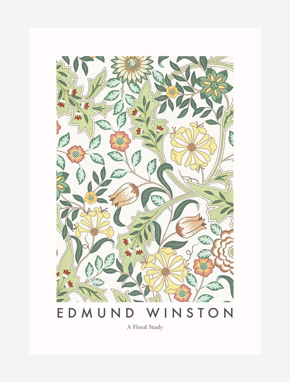 Edmund Winston – A Floral Study