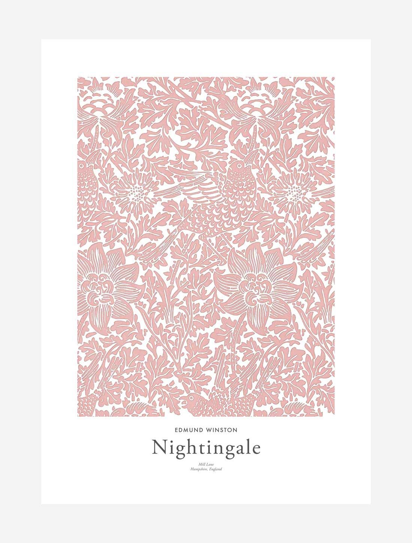 Edmund Winston – Nightingale Print